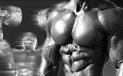 Bodybuilding Guide