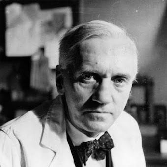 Alexander Fleming (1955-1881) Alexander Ender Fleming, the discoverer of penicillin, was born in 1881 in Lockfield, Scotland. After graduating from the