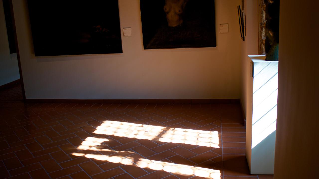 Sombras en el Palacio de Caprotti, Avila 2014