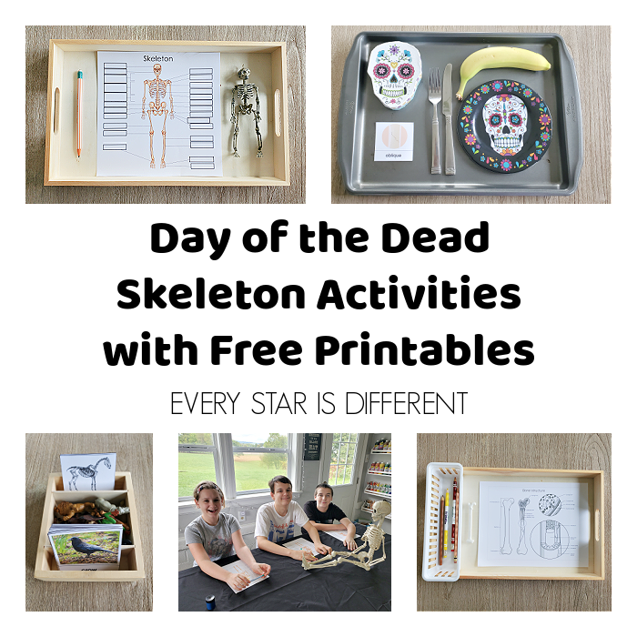 Day of the Dead Skeleton Activities with Free Printable