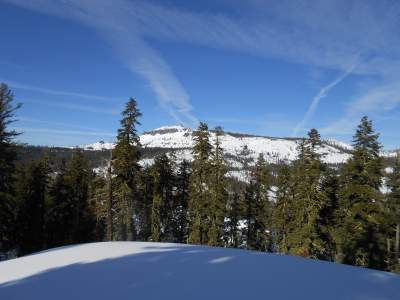 snow, donner summit, trees, spiritual nature