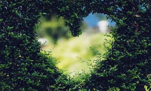 Foto, Berita dan Info Kisah Nyata di Balik Hari Valentine, Sejarah Valentine 14 Februari - www.heru.my.id