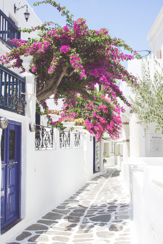 Beautiful Flower Travel Architecture Building Photography | Mykonos, Greece House