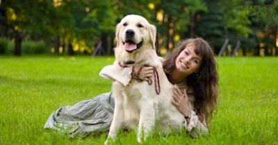 Tener perro responsabilidad