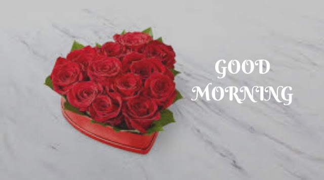 good morning heart and rose images