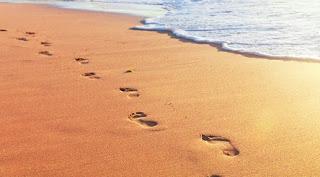 Urmele pașilor: Poveste cu tâlc