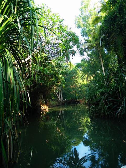 poovar backwater kerala travel blog