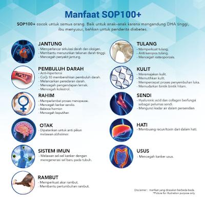 SOP 100+ Jakarta - SOP100