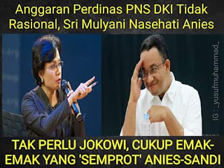 Tak Perlu Jokowi, Cukup Emak - Emak Yang 'Nasehati' Anies-Sandi