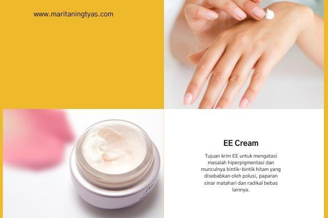 pengertian dan fungsi ee cream