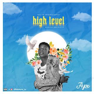 Ayox high level artwork