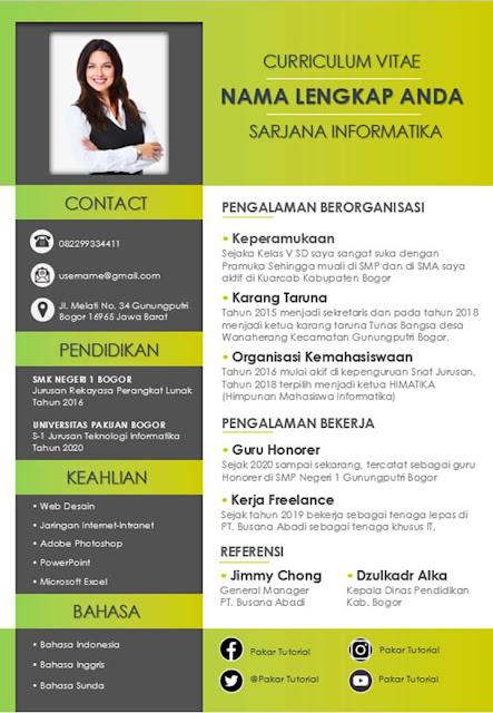 Contoh CV yang Bagus