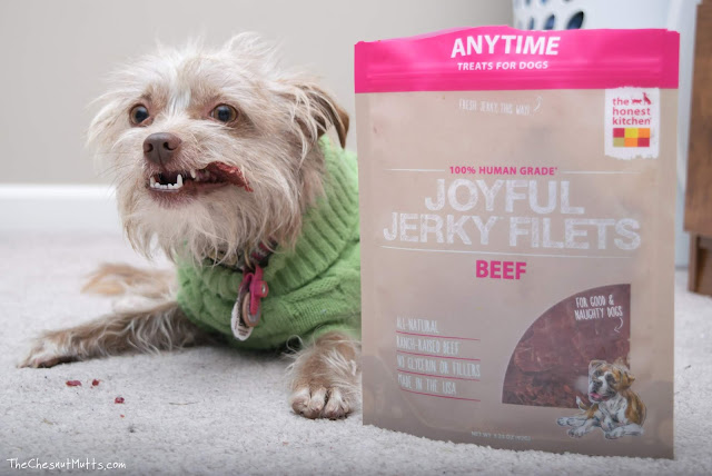 Mini Review: The Honest Kitchen Joyful Jerky Dog Treats
