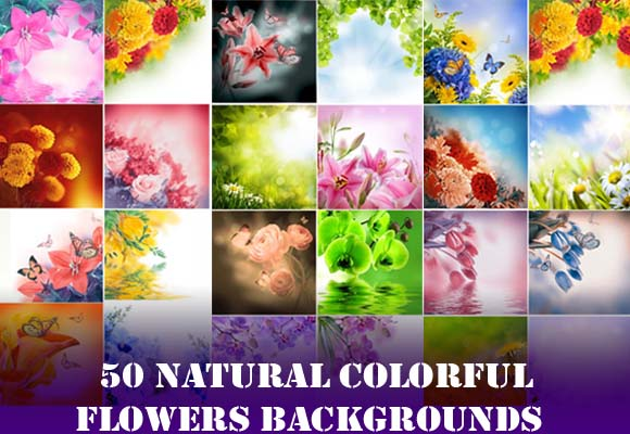 Flowers Backgrounds HD