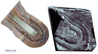 Huellas de seres avanzados que caminaron por la Tierra hace millones de años