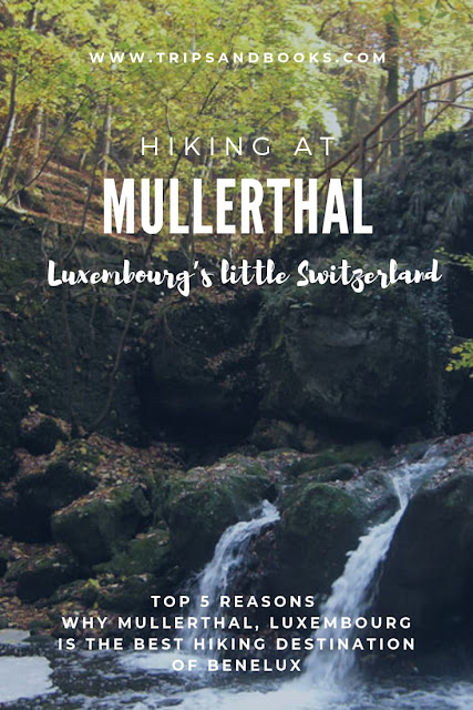 Hiking at Mullerthal trial, Luxembourg