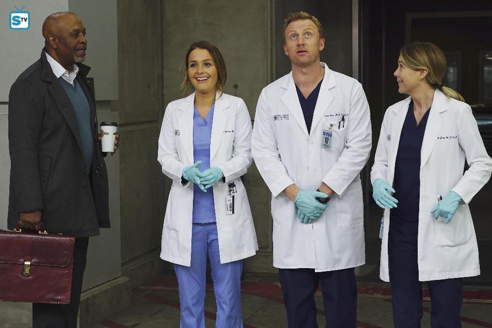 Grey's Anatomy - Episode 12.21 - You're Gonna Need Someone ...