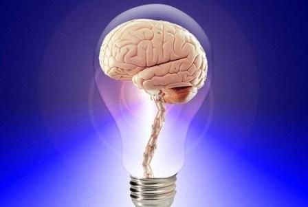 Memori Otak berkurang pada Usia 20 Tahun