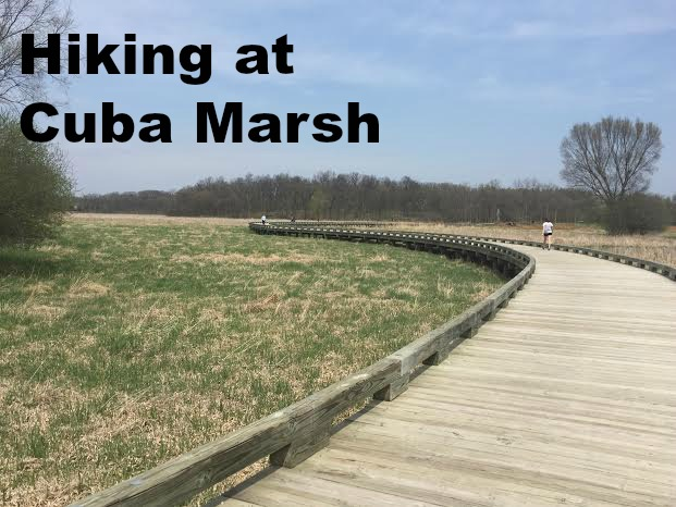 Hiking at Cuba Marsh
