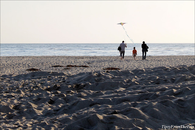 Carmel River State Beach, Carmel, California.