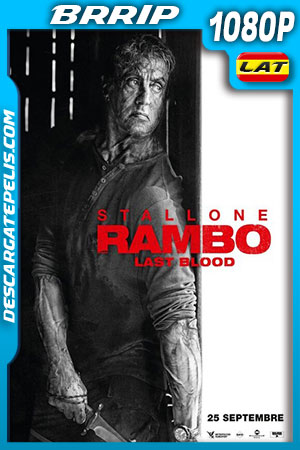 Rambo: Ultima Misión (2019) HD 1080p BRRip Latino – Ingles