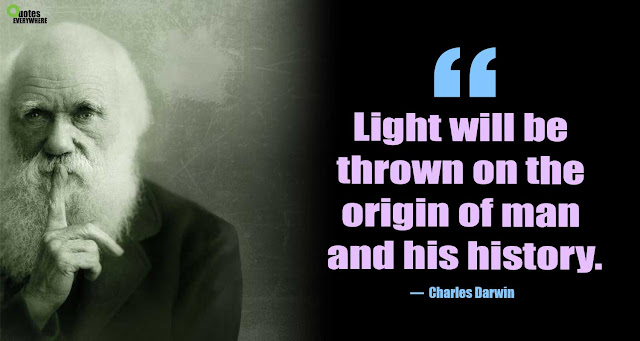 Charles Darwin Quotes On Evolution