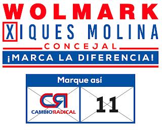 Wolmark Xiques Molina al concejo de Juan de Acosta