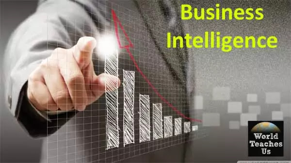 business intelligence / grow the business