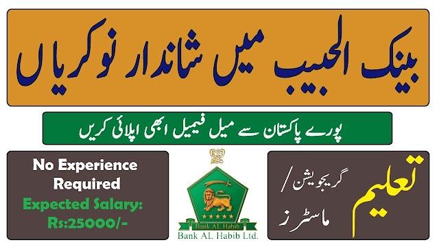 Latest Bank Al Habib Limited Jobs 2020 for Business Development Officer – Islamic Banking VULearningPK
