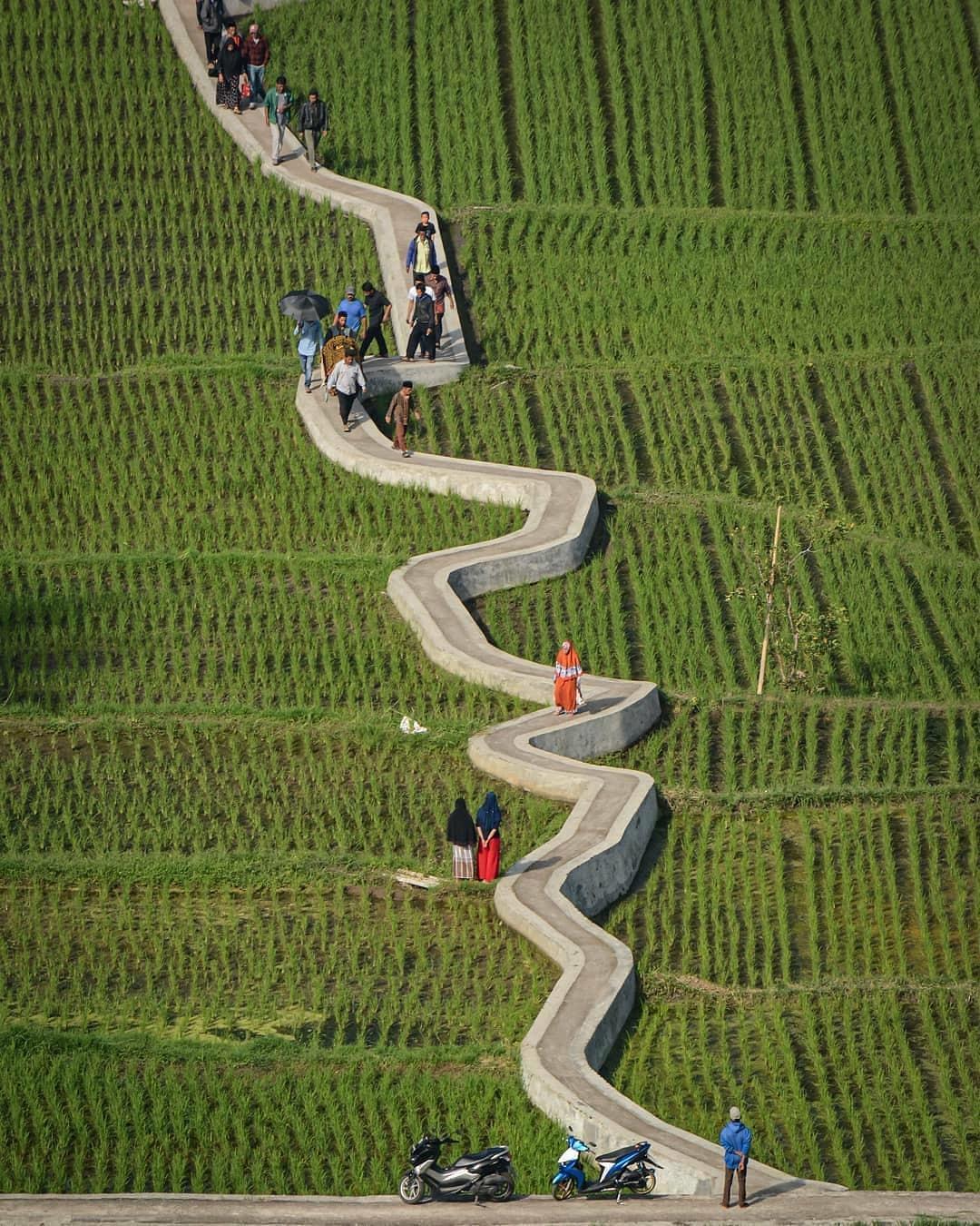 Objek Wisata Jalan di Ngarai Sianok Bukit Tinggi Sumatera Barat