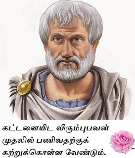 Aristotle Philosophy