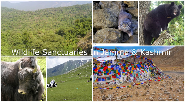 Wildlife Sanctuaries in Jammu & Kashmir