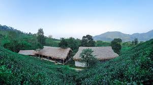 Cửa tử Hoàng Nông Fram - Điểm du lịch dã ngoại, trải nghiệm hấp dẫn và những Món ăn ngon, Đặc sản nơi đây