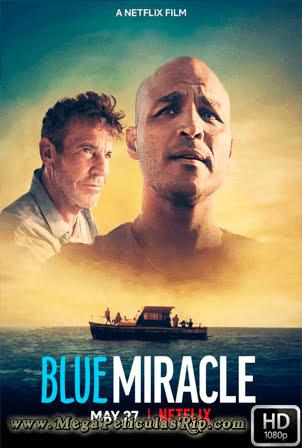 Milagro Azul [1080p] [Latino-Ingles] [MEGA]