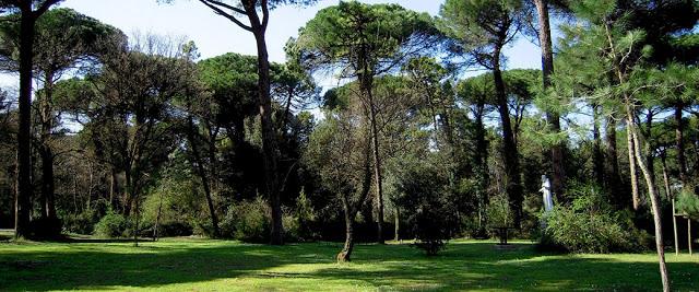 Cervia-il-parco-naturale