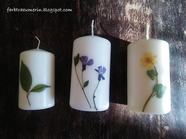 do-it-yourself-candle-diy-kerze-mit-blueten-und-pflanzen