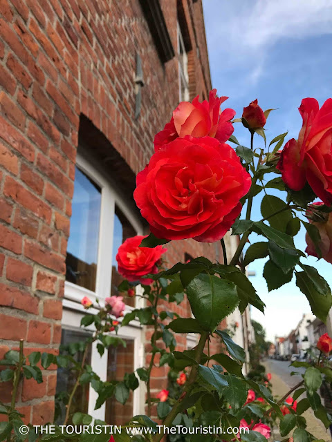 Red roses in front of a red brick facade with a small street in the background