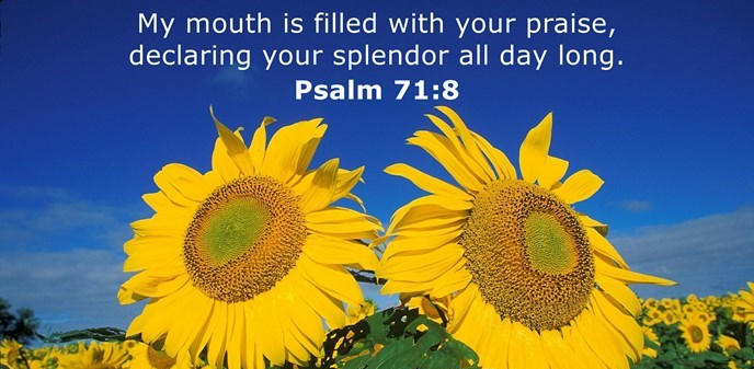 Psalms 71:8  My mouth is filled with your praise, declaring your splendor all day long.