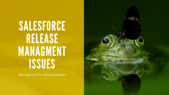 sfdc247 release management