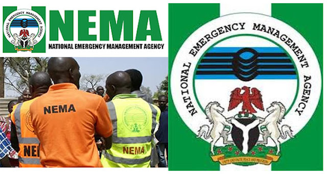 Muhammadu Alhaji Muhammed appoints as new NEMA DG