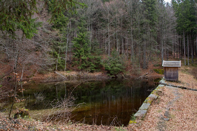 Auf vergessenen Wegen von Finsterau nach Buchwald  Wandern im Bayerischen Wald  Wanderung Nationalpark Bayerischer Wald 05