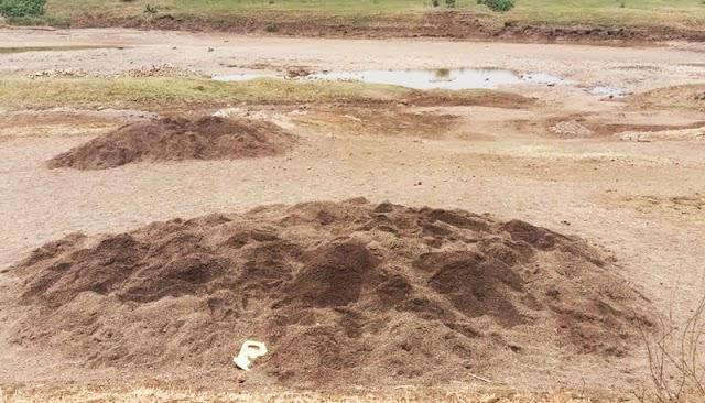 महसूलच अर्थपूर्ण दुर्लक्ष; पैनगंगा नदीच्या कोठतांडा भागात गाढवांच्या साहाय्याने रेतीची तस्करी  - NNL