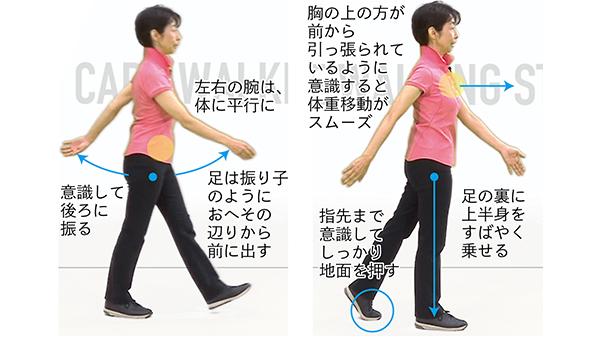 ウォーキングの正しい歩き方