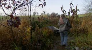 Carol Klein carrying Hedychiums