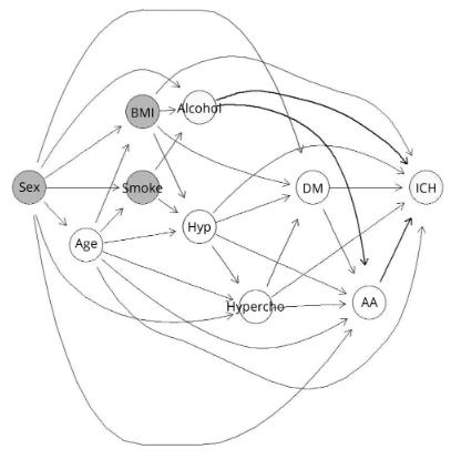 図:有向非巡回グラフ 脳内出血とアルコール