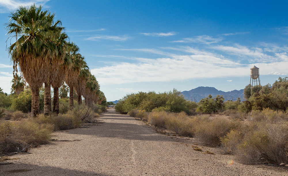 desolate abandoned roads in World War II internment camp for Japanese