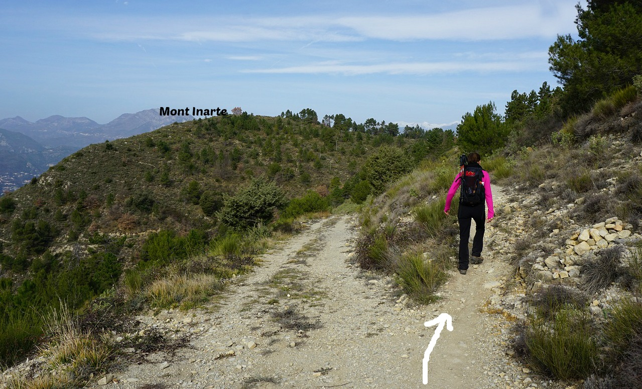 Trail to Mont Inarte