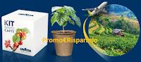 Logo ''Alla scoperta del mondo del caffè'': vinci 2.000 kit per coltivazione caffè e 2 viaggi in Brasile per 2 persone