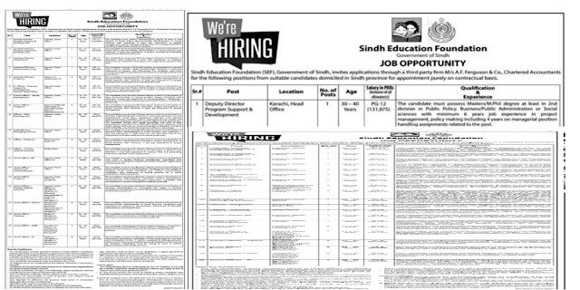 Sindh Education Foundation SEF Government of Sindh Jobs 2021For Senior Program Officer, Finance & Accounts Officer, Junior Officer-HR, & more