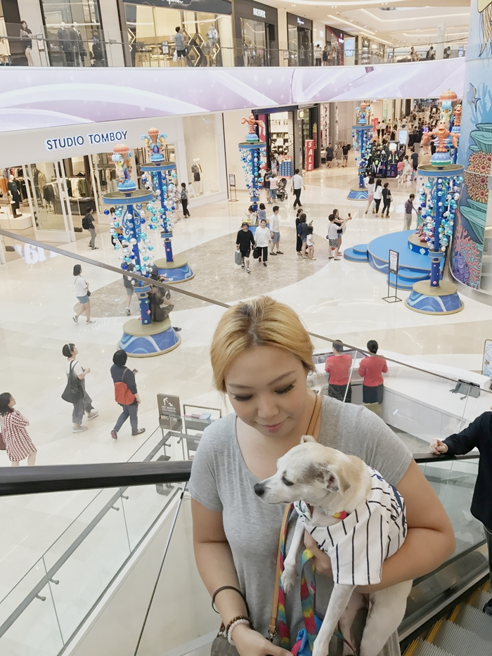 Korea's First Dog Friendly Mall - Starfield Hanam